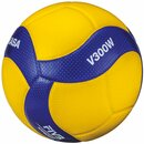Volleyball V300W
